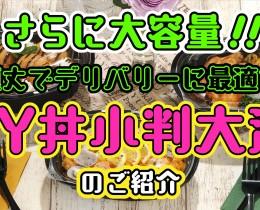CY丼小判大深タイトル
